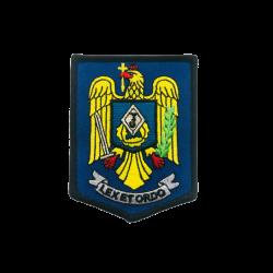 Insemn Jandarmeria Scut